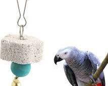 Kiegészítő eleségek papagájoknak